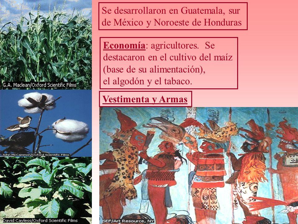 Se desarrollaron en Guatemala, sur de México y Noroeste de Honduras Economía: agricultores. Se destacaron en el cultivo del maíz (base de su alimentac