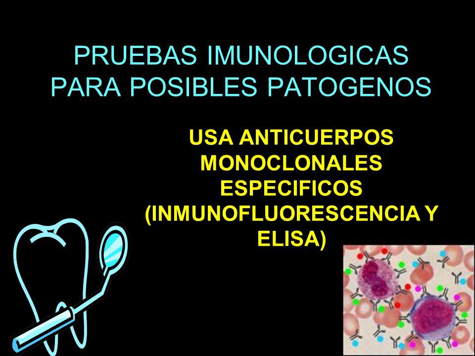 PRUEBAS IMUNOLOGICAS PARA POSIBLES PATOGENOS USA ANTICUERPOS MONOCLONALES ESPECIFICOS (INMUNOFLUORESCENCIA Y ELISA)