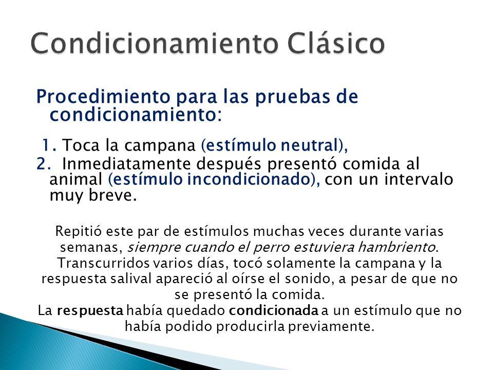 Procedimiento para las pruebas de condicionamiento: 1. Toca la campana (estímulo neutral), 2. Inmediatamente después presentó comida al animal (estímu