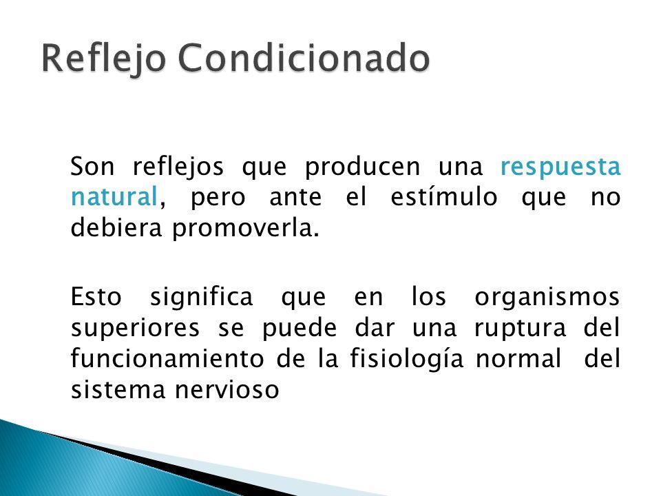 Finalmente, existe el refuerzo, que es el fortalecimiento de la asociación entre un estímulo incondicionado con el condicionado.