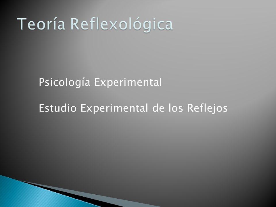 Psicología Experimental Estudio Experimental de los Reflejos