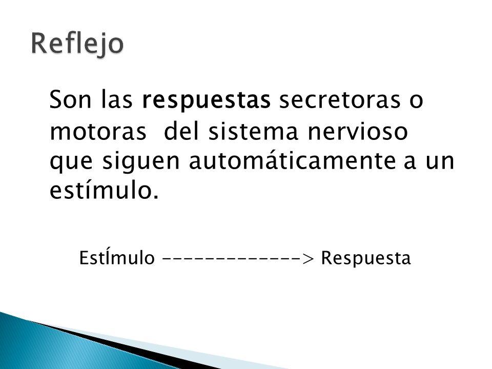 Son las respuestas secretoras o motoras del sistema nervioso que siguen automáticamente a un estímulo. EstÍmulo -------------> Respuesta