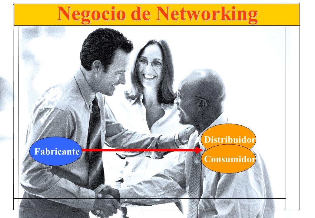Fabricante Distribuidor Consumidor Negocio de Networking