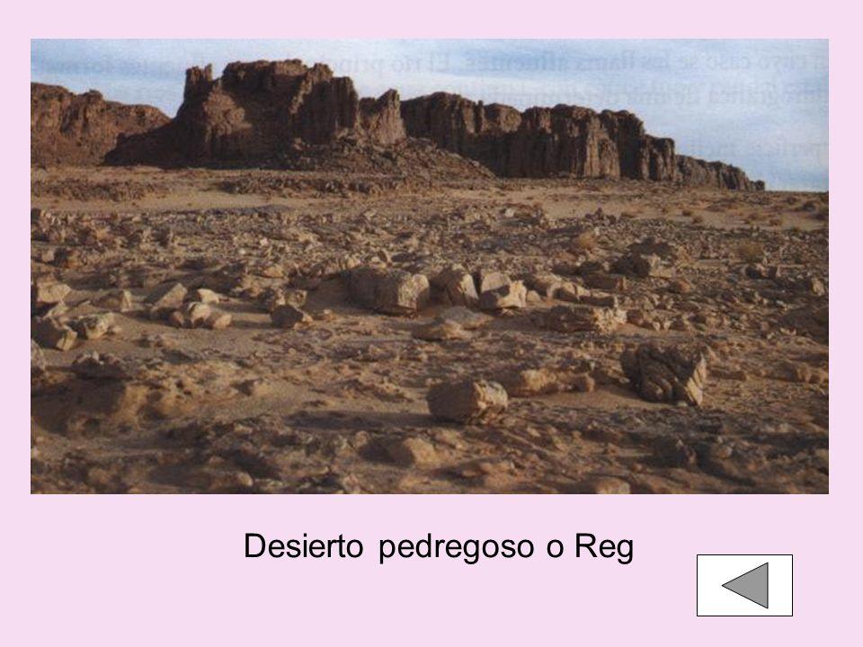 Desierto pedregoso o Reg