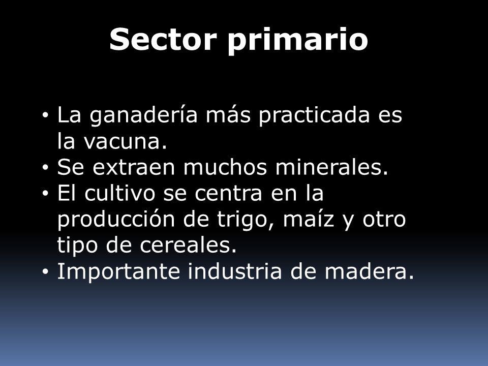 Sector primario La ganadería más practicada es la vacuna. Se extraen muchos minerales. El cultivo se centra en la producción de trigo, maíz y otro tip