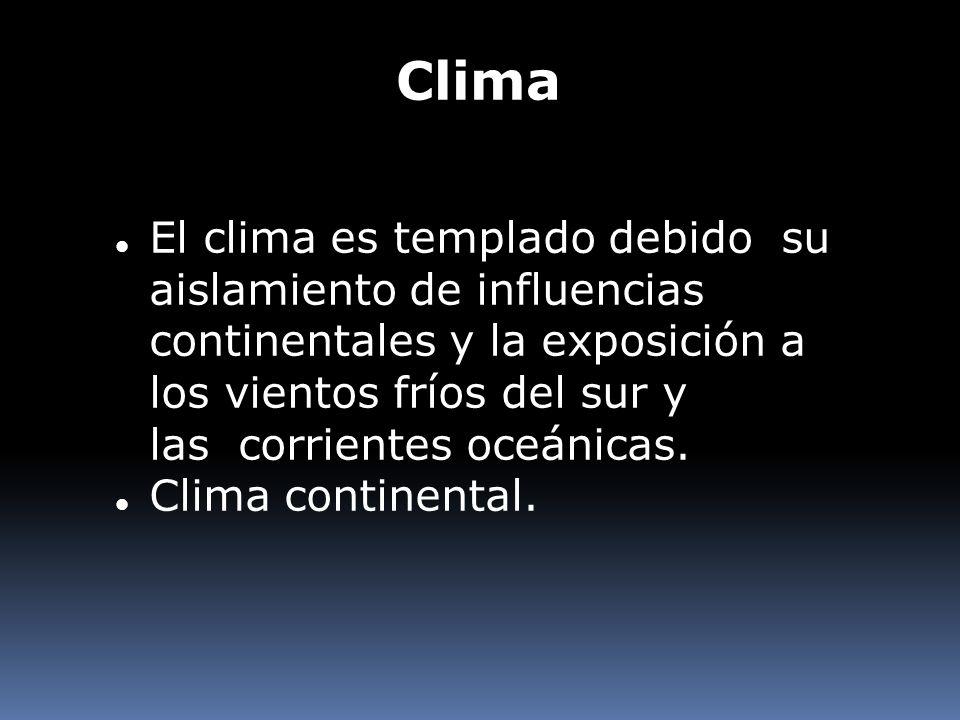 El clima es templado debido su aislamiento de influencias continentales y la exposición a los vientos fríos del sur y las corrientes oceánicas. Clima