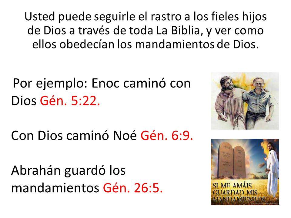 Usted puede seguirle el rastro a los fieles hijos de Dios a través de toda La Biblia, y ver como ellos obedecían los mandamientos de Dios. Por ejemplo