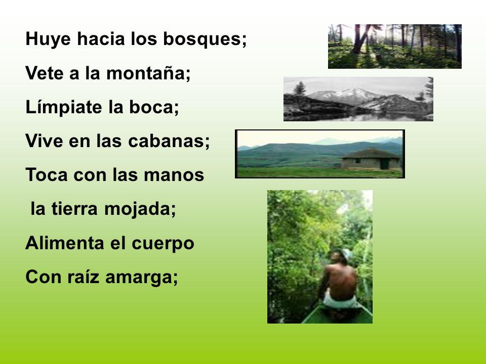 Huye hacia los bosques; Vete a la montaña; Límpiate la boca; Vive en las cabanas; Toca con las manos la tierra mojada; Alimenta el cuerpo Con raíz ama