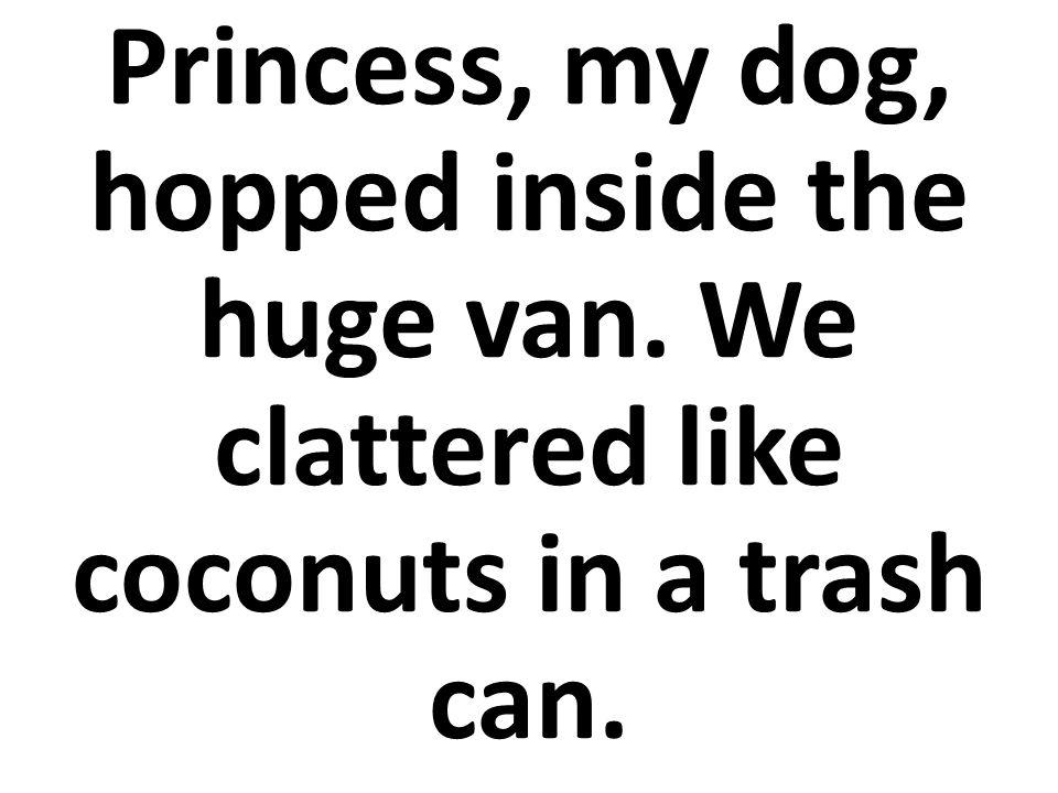 Princesa, mi perro, saltaba dentro de la furgoneta enorme.
