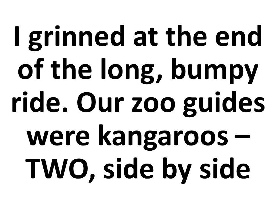 Me sonreí al final del largo paseo. Nuestros guías fueron los canguros –DOS, uno junto al otro.