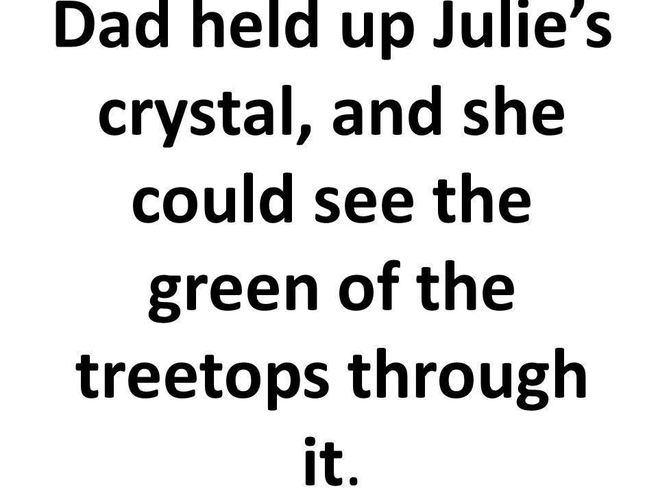 Su papá levantó el cristal y Julia a través del mismo pudo ver el árbol verde.