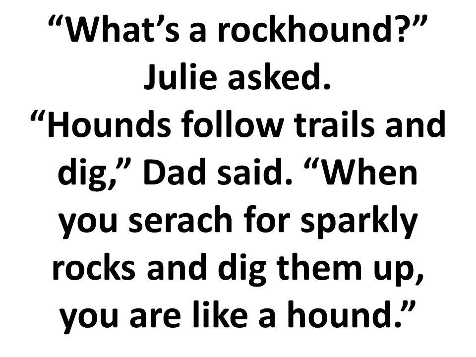 ¿Qué es una buscadora de rocas? Preguntó Julia. Las buscadoras de rocas siguen los caminos y excavan en la tierra, Dijo el papá. Cuando buscas por las