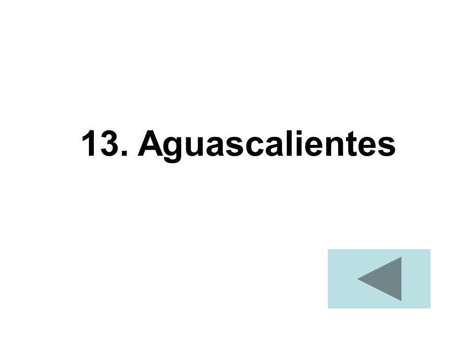 13. Aguascalientes