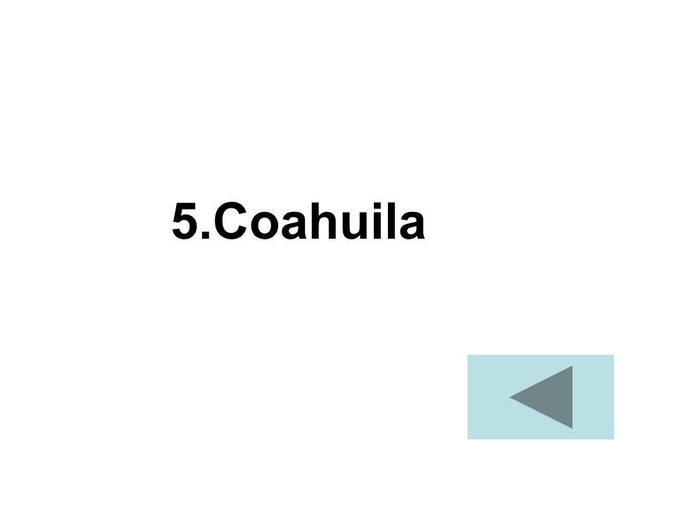5.Coahuila