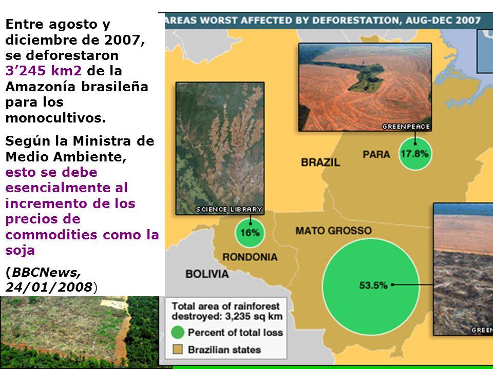 22 Entre agosto y diciembre de 2007, se deforestaron 3245 km2 de la Amazonía brasileña para los monocultivos.