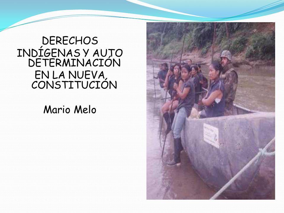 DERECHOS INDÍGENAS Y AUTO DETERMINACIÓN EN LA NUEVA CONSTITUCIÓN Mario Melo