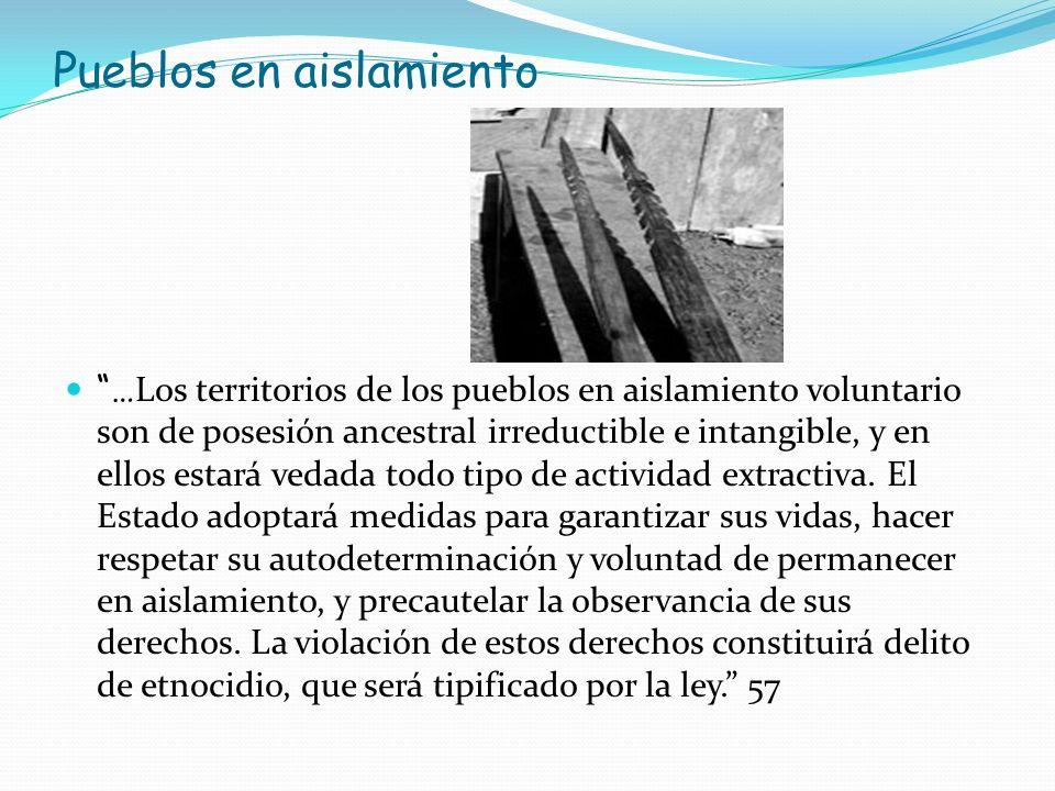 Pueblos en aislamiento … Los territorios de los pueblos en aislamiento voluntario son de posesión ancestral irreductible e intangible, y en ellos esta
