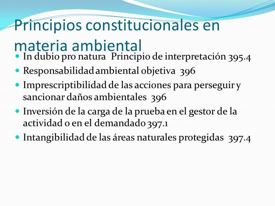 Principios constitucionales en materia ambiental In dubio pro natura Principio de interpretación 395.4 Responsabilidad ambiental objetiva 396 Imprescr