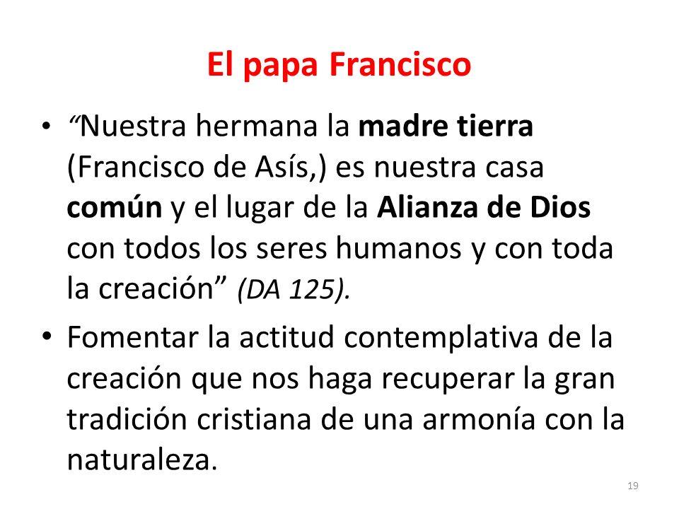 El papa Francisco Francisco, anda y repara mi casa, que, como ves, está toda en ruinas, le dice el crucificado al pobre de Asís en la pequeña capilla