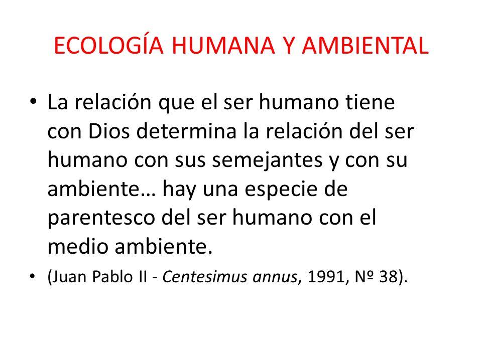 LA PERSONA HUMANA Y SU CASA COMÚN En nuestra tierra hay lugar para todos: la familia humana debe encontrar los recursos necesarios para vivir dignamen