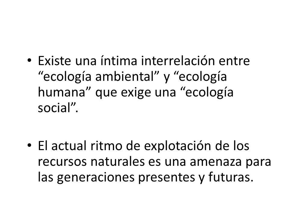 DESARROLLO Y EL AMBIENTE El tema del desarrollo está también muy unido hoy a los deberes que nacen de la relación del hombre con el ambiente natural.