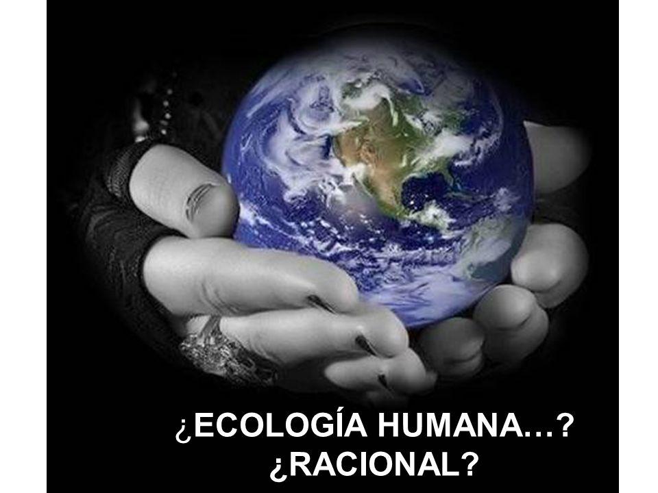 Existe una íntima interrelación entre ecología ambiental y ecología humana que exige una ecología social. El actual ritmo de explotación de los recurs
