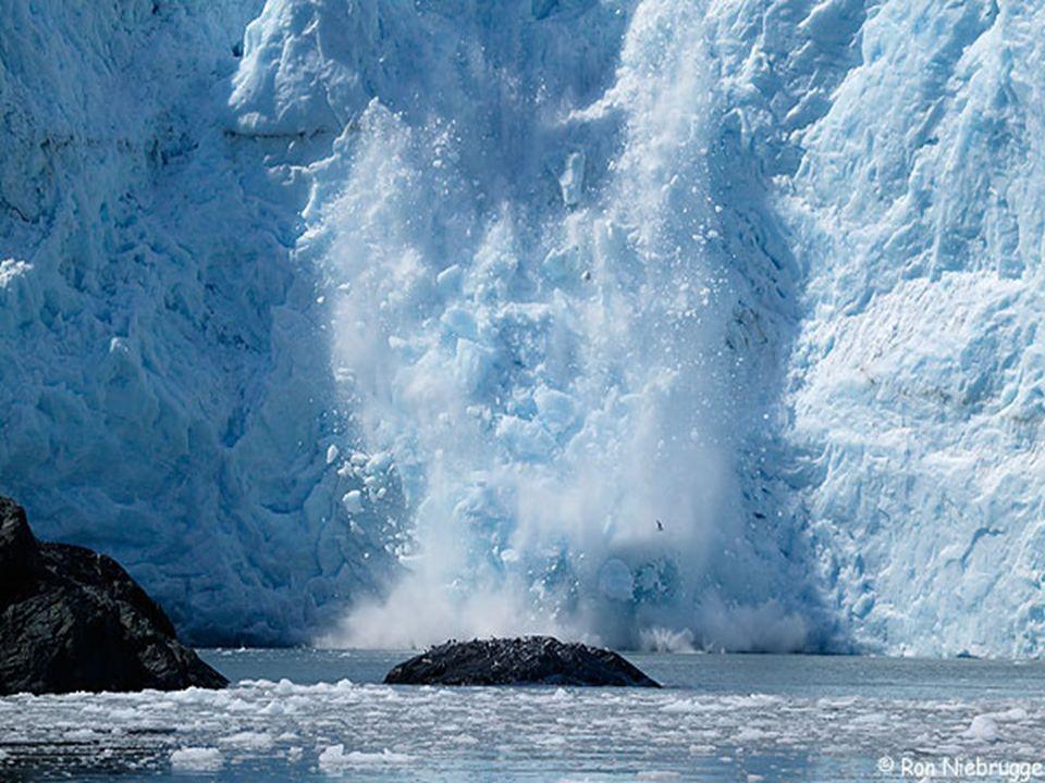 EL MÁS URGENTE DESAFÍO Constatamos el retroceso de los hielos en todo el mundo: el deshielo del Ártico, cuyo impacto ya se esta viendo en la flora y f