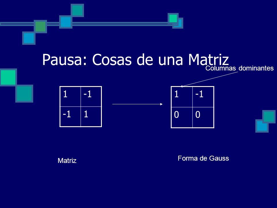 Pausa: Cosas de una Matriz 1 00 1 1 Matriz Forma de Gauss Columnas dominantes