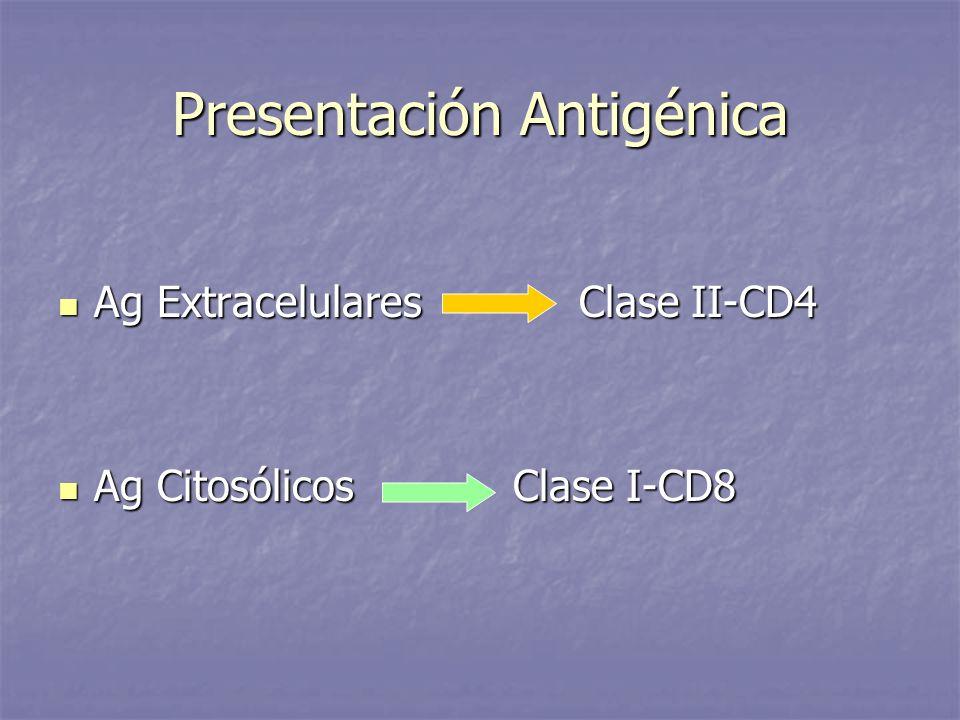 Presentación Antigénica Ag Extracelulares Clase II-CD4 Ag Extracelulares Clase II-CD4 Ag Citosólicos Clase I-CD8 Ag Citosólicos Clase I-CD8