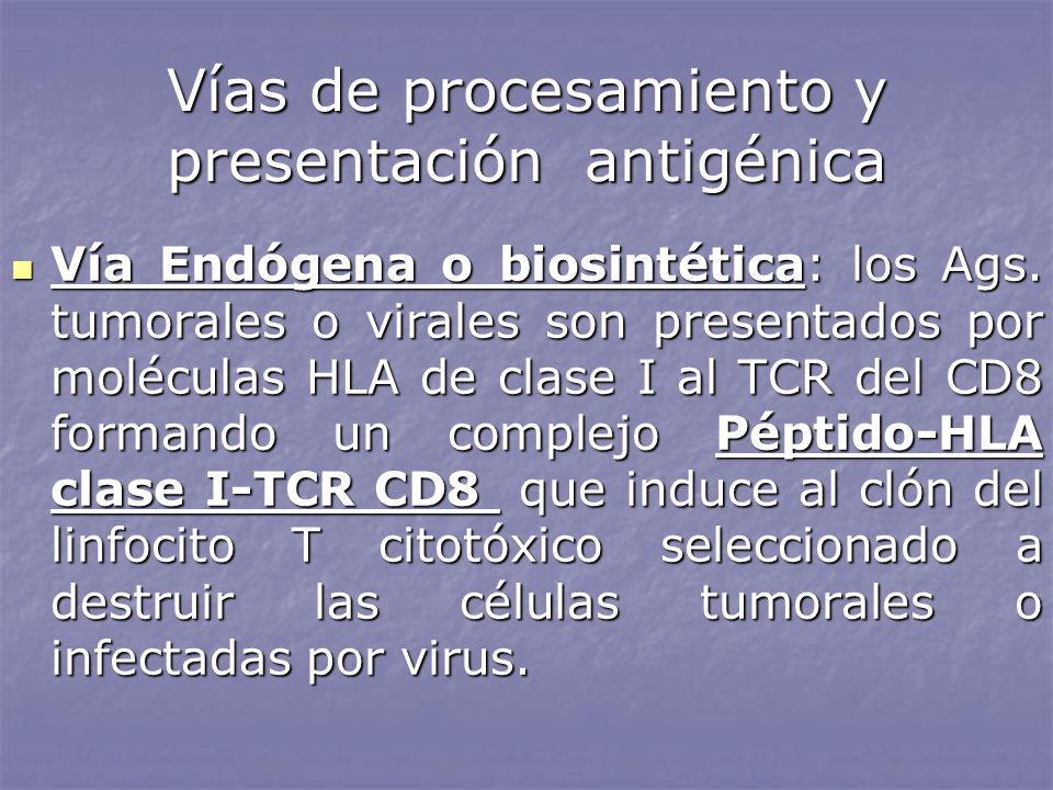 Vías de procesamiento y presentación antigénica Vía Endógena o biosintética: los Ags. tumorales o virales son presentados por moléculas HLA de clase I