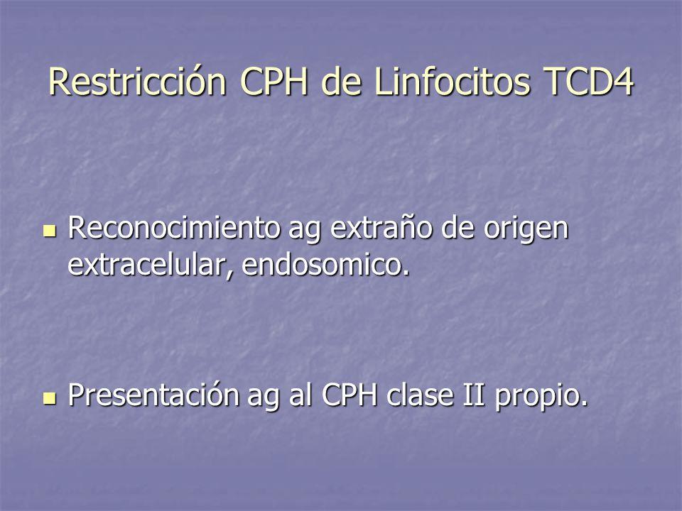 Restricción CPH de Linfocitos TCD4 Reconocimiento ag extraño de origen extracelular, endosomico. Reconocimiento ag extraño de origen extracelular, end