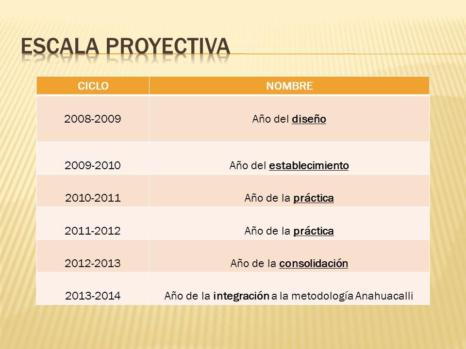 CICLONOMBRE 2008-2009Año del diseño 2009-2010Año del establecimiento 2010-2011Año de la práctica 2011-2012Año de la práctica 2012-2013Año de la consol
