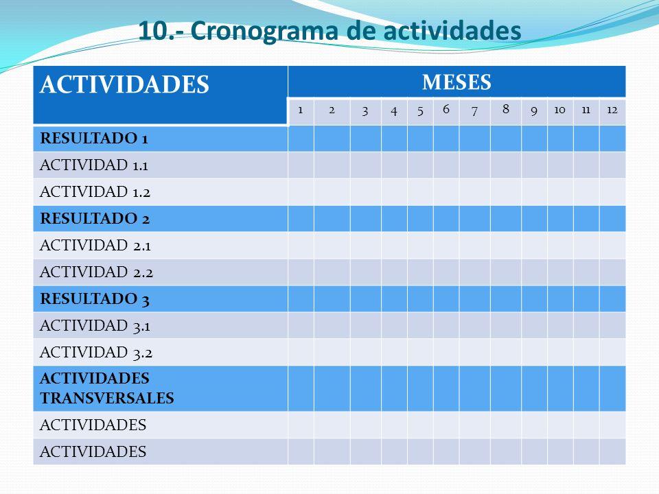 10.- Cronograma de actividades ACTIVIDADES MESES 123456789101112 RESULTADO 1 ACTIVIDAD 1.1 ACTIVIDAD 1.2 RESULTADO 2 ACTIVIDAD 2.1 ACTIVIDAD 2.2 RESUL