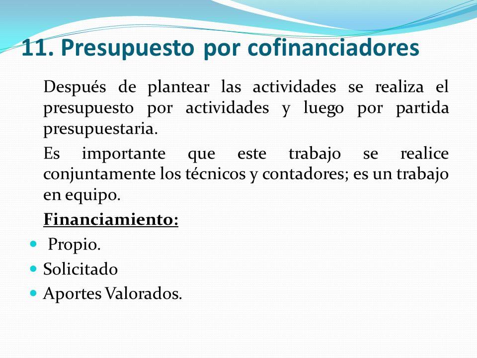 11. Presupuesto por cofinanciadores Después de plantear las actividades se realiza el presupuesto por actividades y luego por partida presupuestaria.