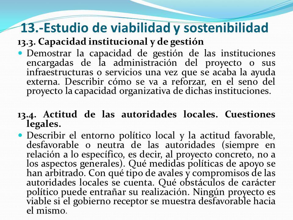 13.-Estudio de viabilidad y sostenibilidad 13.3. Capacidad institucional y de gestión Demostrar la capacidad de gestión de las instituciones encargada