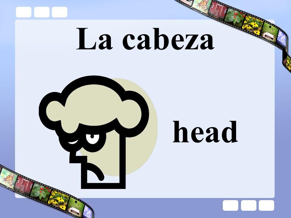 La cabeza head