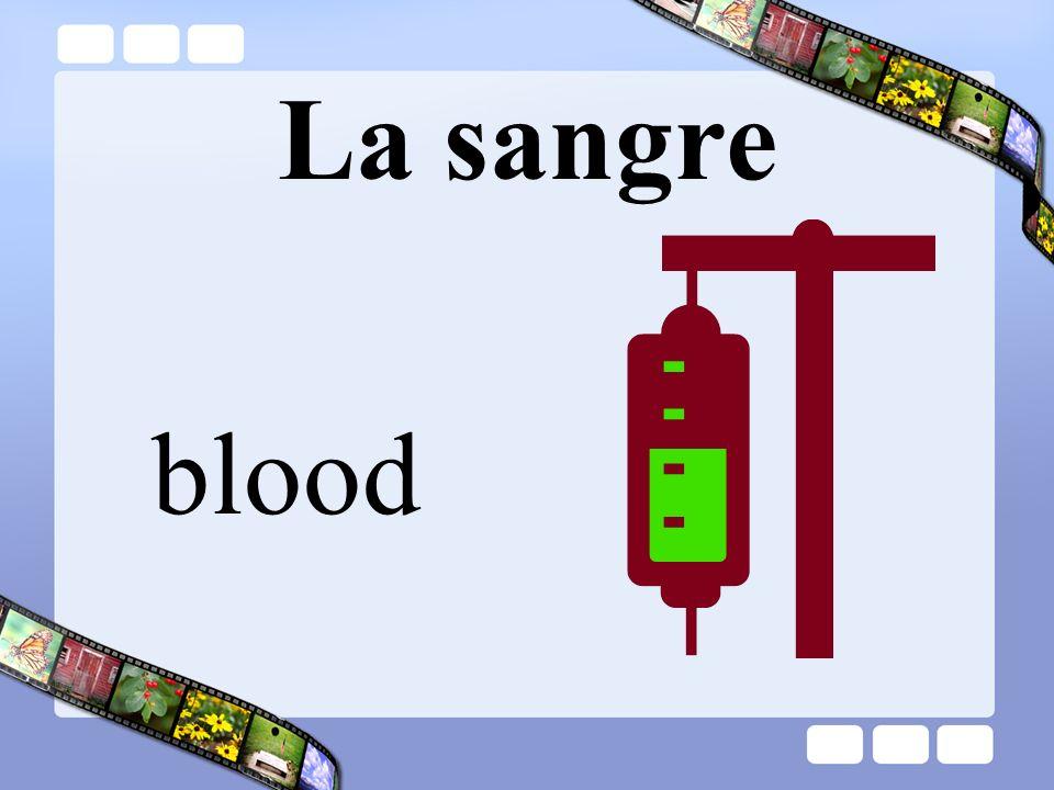 La sangre blood