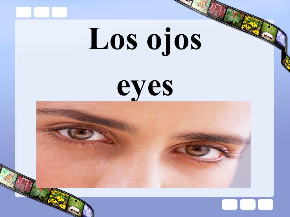 Los ojos eyes