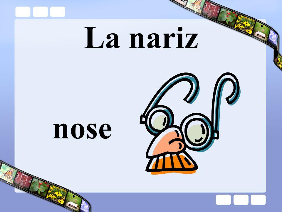 La nariz nose