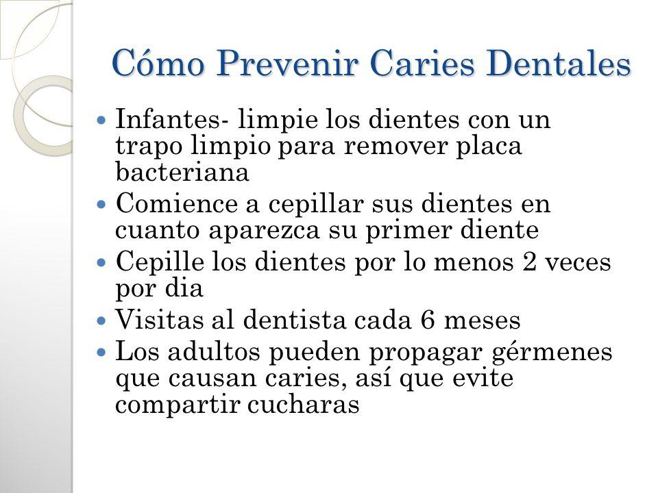 Cómo Prevenir Caries Dentales Infantes- limpie los dientes con un trapo limpio para remover placa bacteriana Comience a cepillar sus dientes en cuanto