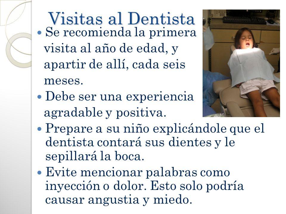 Visitas al Dentista Visitas al Dentista Se recomienda la primera visita al año de edad, y apartir de allí, cada seis meses. Debe ser una experiencia a
