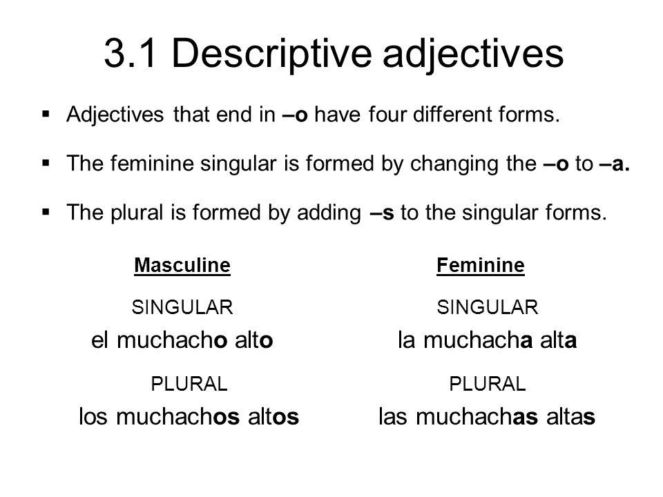 3.1 Descriptive adjectives Masculine SINGULAR el muchacho alto PLURAL los muchachos altos Feminine SINGULAR la muchacha alta PLURAL las muchachas alta