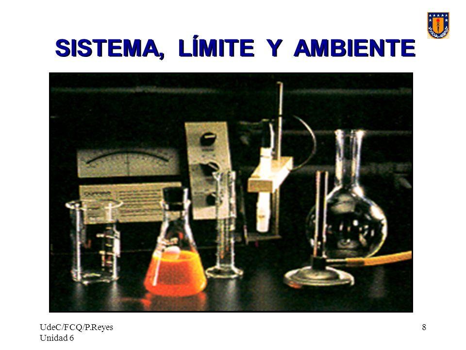 UdeC/FCQ/P.Reyes Unidad 6 8 SISTEMA, LÍMITE Y AMBIENTE