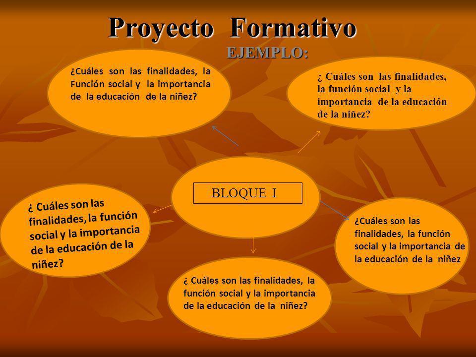 Proyecto Formativo EJEMPLO: ¿Cuáles son las finalidades, la Función social y la importancia de la educación de la niñez.