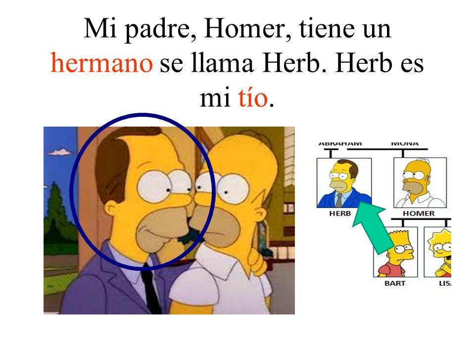 Mi padre, Homer, tiene un hermano se llama Herb. Herb es mi tío.