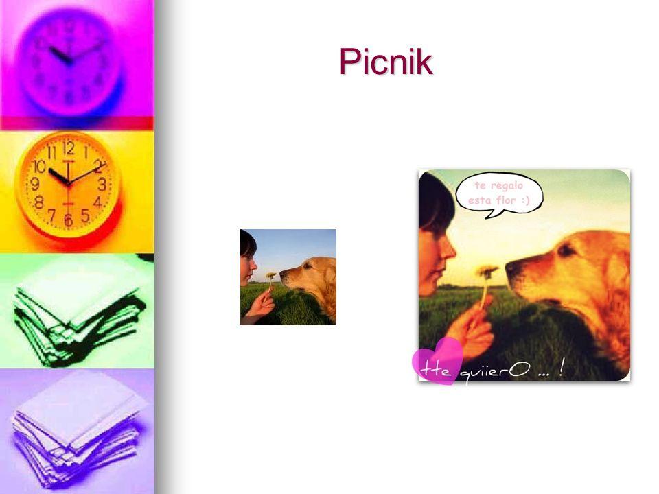 Picnik Picnik