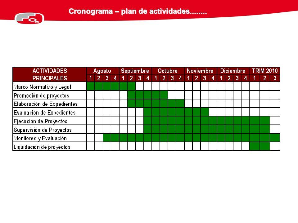 Cronograma – plan de actividades........