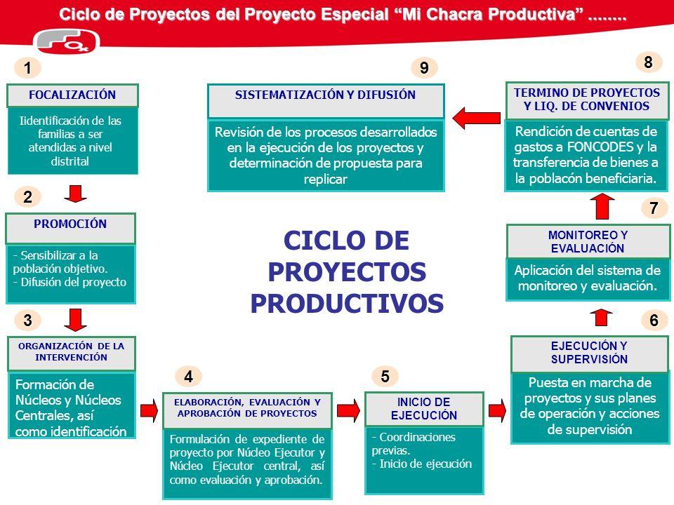 Ciclo de Proyectos del Proyecto Especial Mi Chacra Productiva........ CICLO DE PROYECTOS PRODUCTIVOS FOCALIZACIÓN Formación de Núcleos y Núcleos Centr