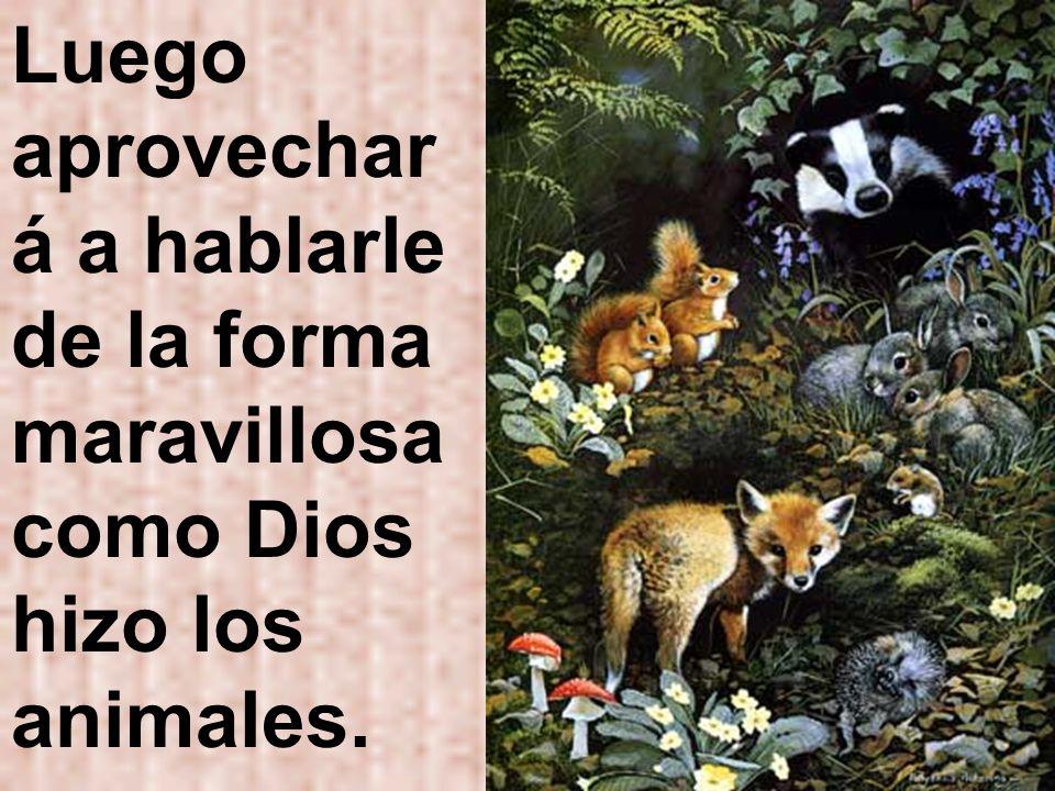 Luego aprovechar á a hablarle de la forma maravillosa como Dios hizo los animales.