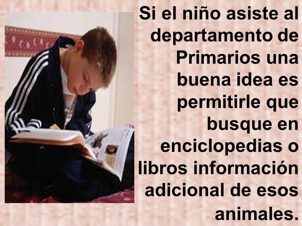 Si el niño asiste al departamento de Primarios una buena idea es permitirle que busque en enciclopedias o libros información adicional de esos animale